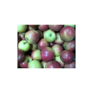 Apfel Natyra (knackig-saftig)