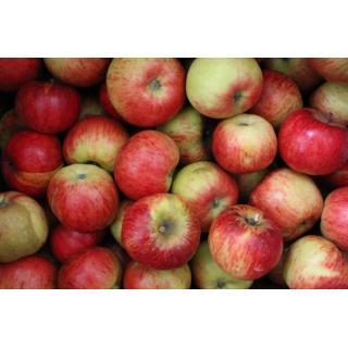 Apfel Topaz (süß-sauer)